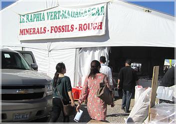 鉱物と化石の専門店