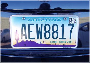 アリゾナ州はやっぱりサボテン